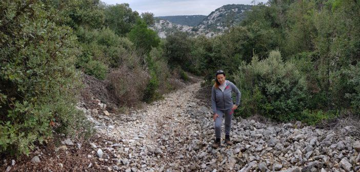 (Foto) Promenada de weekend cu 15 km la activ